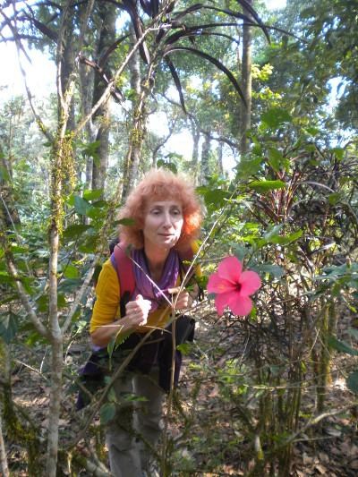 sylvie-guillaume-fleur-de-bach-avignon
